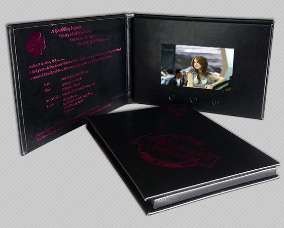 P系列  皮装视频卡书